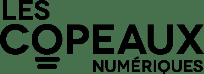 Les Copeaux Numériques